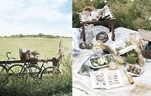 Zabrałabym Ja na rodzinny piknik, gdzieś na łake, żeby mogła pooddychać śwież...