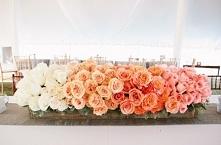 Kwiaty ombre ♥