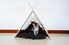 Namiot tipi z drapakiem dla...