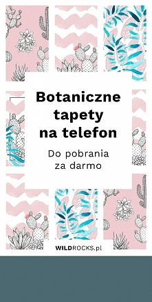 Przygotowałam dla Was botaniczne tapety na telefon, do pobrania za darmo.  (a...