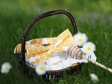 Muszka plaster miodu i poszetka w pszczoły :) letni zestaw