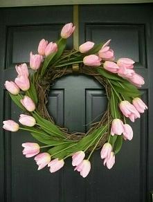 wieniec tulipany