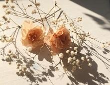 Cudnie i kwiatowoo <3