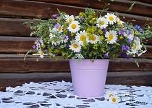 Bukiet z polnych kwiatow