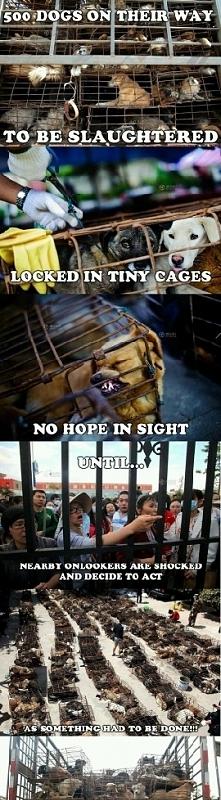 faith in humanity..