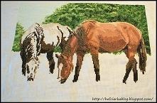 Haft krzyżykowy - konie
