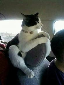 Pan i władca auta :D