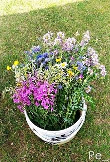 Bukiet z polnych kwiatów :))  Zdjęcie jest mojego autorstwa i stanowi moją wł...