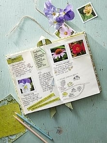 Set your garden goals