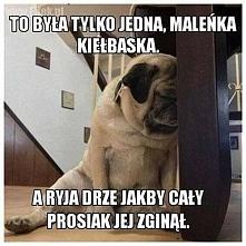 Kiełbaska5