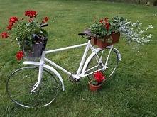Stary rower Nowe zastosowanie