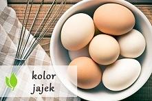 czy kolor jajek ma jakieś znaczenie?