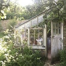 Moje marzenia kręcą się wokół Domu. Marzy mi się swój dom w starodawnym stylu, blisko jeziora na mazurach lub w górach. Jedno z dwóch. chcę mieć szklarnie zasadzę tam róże. Mam ...