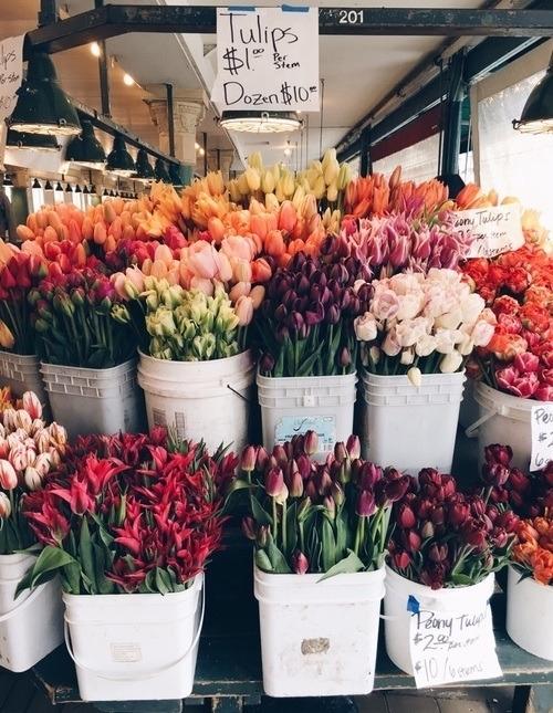 tulips^^