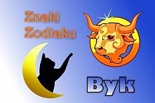 BYK – ZNAK ZODIAKU (20 kwietnia – 20 maja)  Hasło astrologiczne: POSIADAM  Ce...