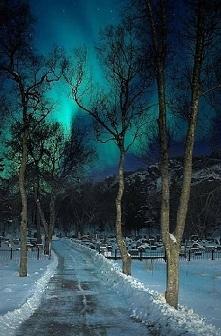 Zorza polarna - Północna No...