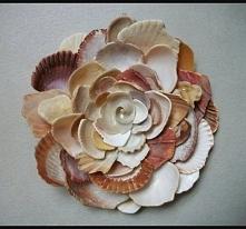 Muszelkowy kwiat :)