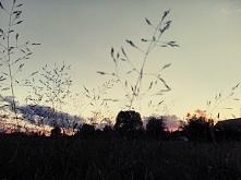 Zachód słońca, leniuchowanie, trawa, relaks ❤️ uwielbiam