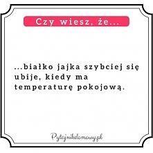 Fiszki pytajnikdomowy.pl