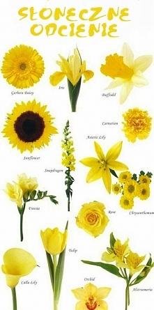 żółte kwiaty do bukietu ślubnego