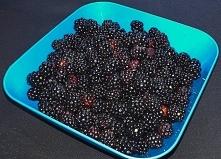 Prosto z lasu dzikie jeżyny :) Owoce jagodowe na diecie ketogenicznej to pods...