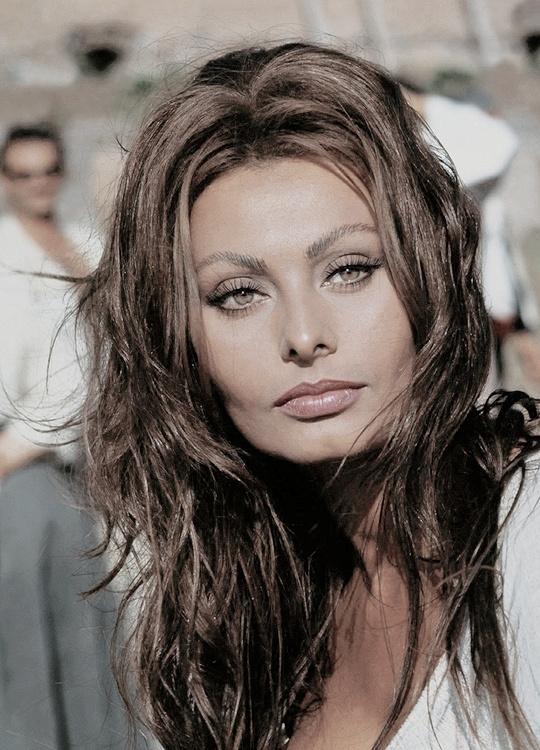 Sophia Loren Na Znani I Lubiani Zszywkapl