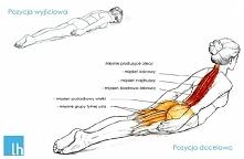 Ćwiczenie na mięśnie kręgosłupa.