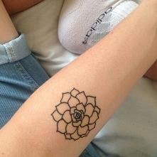 Mały skromny kwiatuszek :)