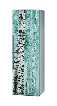 Naklejka na lodówkę - Brzozy 1409