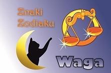 WAGA – ZNAK ZODIAKU (23 września – 22 października)  Hasło astrologiczne: WAH...