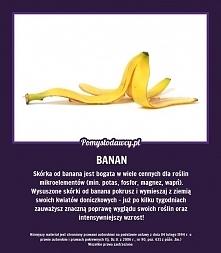 skórka z banana pomaga łago...