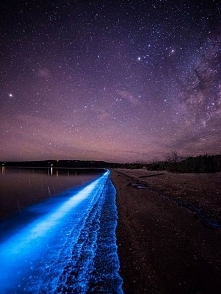 Świecący fitoplankton na tasmańskiej plaży :)