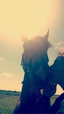 """""""jeździectwo to nie ho..."""