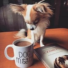 Coffee Time ❤☕
