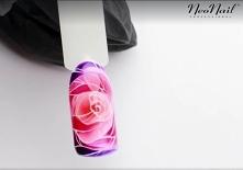 Witrażowa róża
