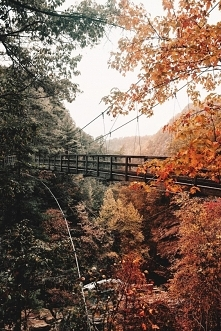 Tallulah Gorge State Park b...