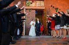 niespodzianka na ślubie dla mojego brata. Orszak róż.