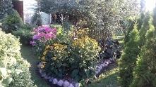 ogrodowe aranżacje