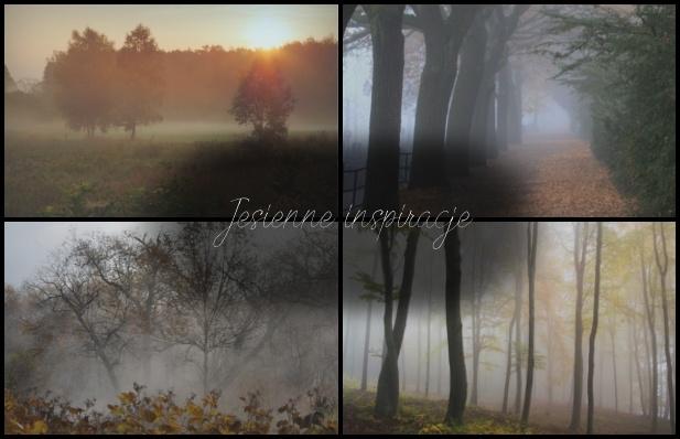 To co mnie najbardziej urzeka, to mgła.  Niesamowita jest. Wieczorne czy poranne spacery we mgle pobudzają moją wyobraźnię. Szczególnie wieczorem, gdy aura przestrzeni zyskuje na romantyczności w mojej głowie rozpoczyna się niezwykły taniec myśli. Wirujące w pary, nowe przyjaźnie, dziwne zdarzenia, potknięcia i upadki, zakochania i rozstania. Moja wyobraźnia ma pole do popisu, a ja ubaw lub smutek w zależności od tego, co wymyślę. Świetna sprawa. Nudzisz się w jesienny wieczór? Spójrz w mgłę i spróbuj zobaczyć w niej to, czego nie ma na pierwszy rzut oka, a czego, być może, dane miejsce było świadkiem.