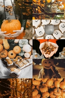 Skarby jesieni