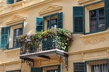 Wiszący ogród – jak upiększyć balkon Mieszkasz w bloku lub domku i masz balko...