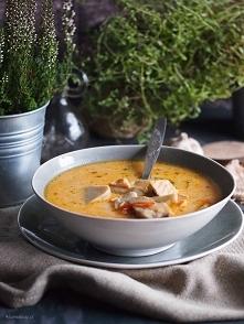 Pikantna zupa grzybowa z łososiem / Spicy mushroom soup with salmon