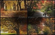 Spacery jesienią to podstaw...