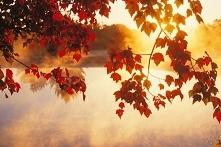 Jesień..czas relaksu, wyciszenia, czas złapania  oddech po energetyzujacym le...