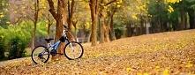 Gdy tylko mamy czas ja i mąż wsiadamy na rowery, żeby nie stracić kondycji oraz spędzić trochę czasu razem :)