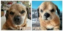 Memorial dog figurine / Figurka pamiątkowa psa Fiber fury