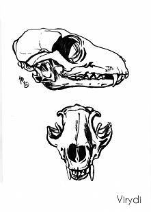 Inktober Cheat Day 18 - Skull (a fox!)