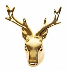 Stan: Nowy produkt  Poroże na ścianę - głowa renifera. Dekoracja wykonana z tworzywa w kolorze jasno złotym z połyskiem. Wyjątkowa rzeźba do dekoracji. Pasuje do każdego wnętrza...