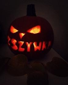 Halloween to czas kiedy się przebieramy w różne upiory, chodzimy zbierać cuki...