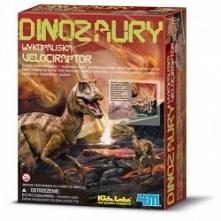 Szkielet Velociraptora do s...
